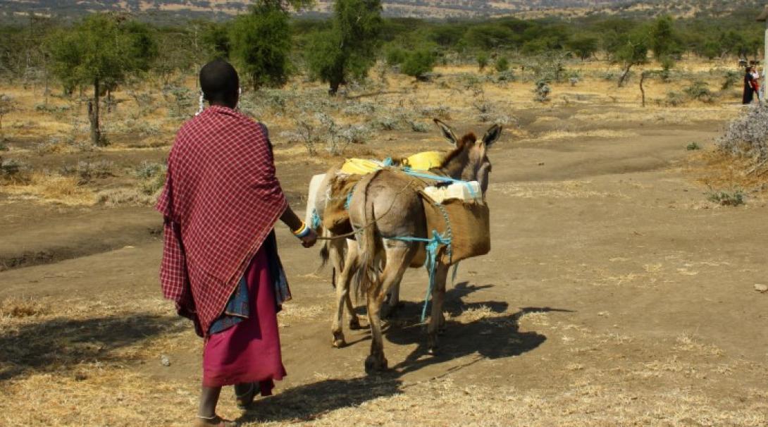 Maasai Project